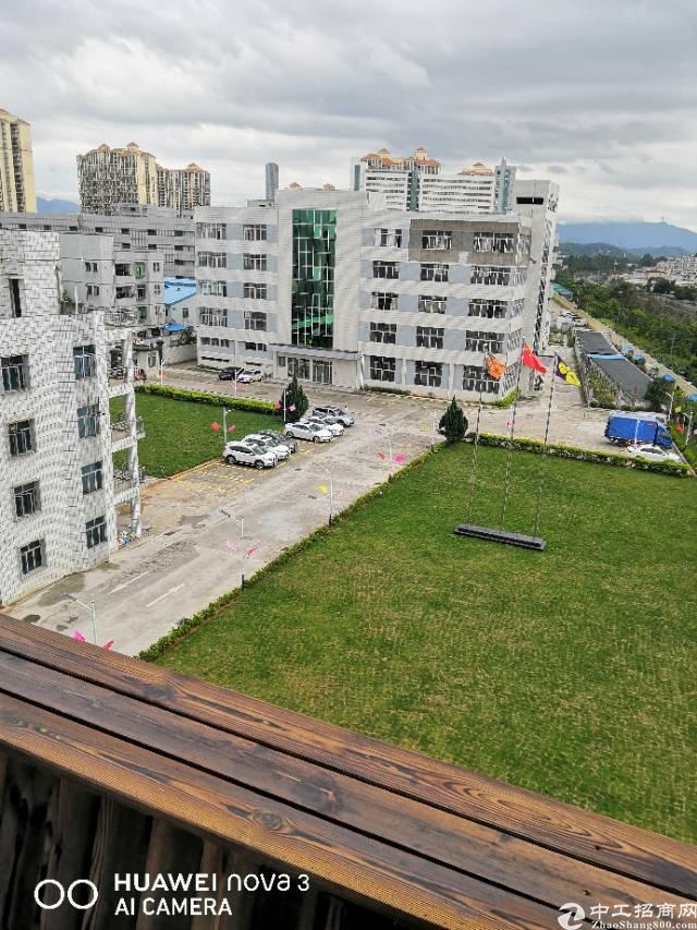 平湖富民工业区花园式厂房出租