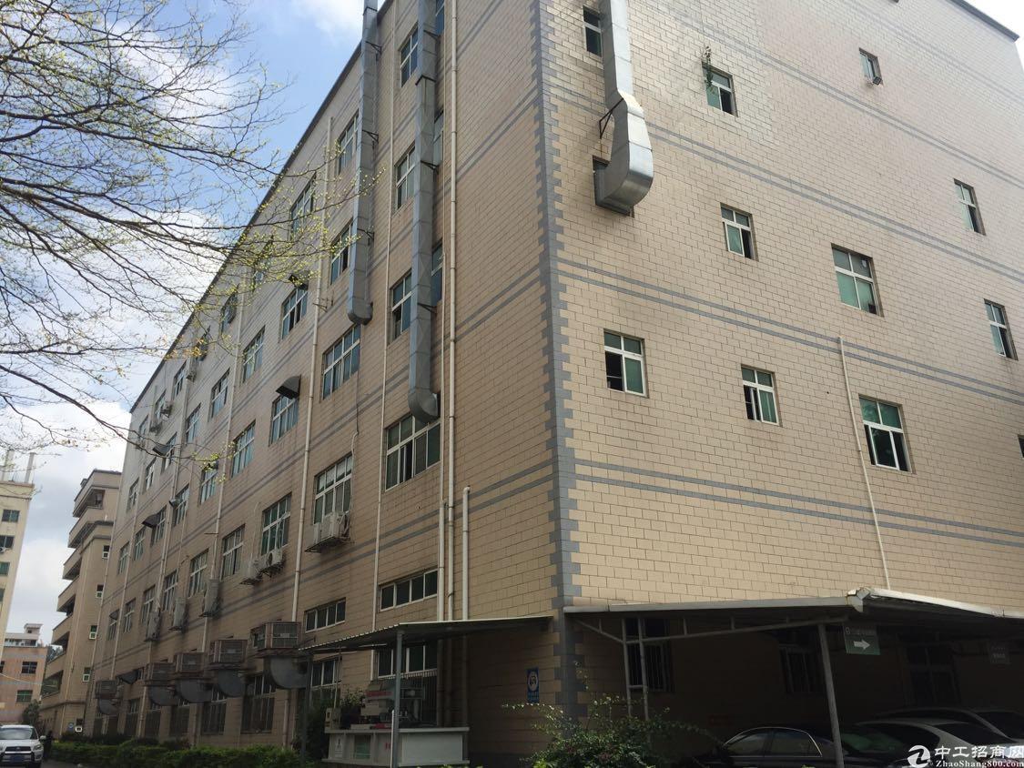 观澜库坑边上新出了一个一楼6米多高的标准厂房出租