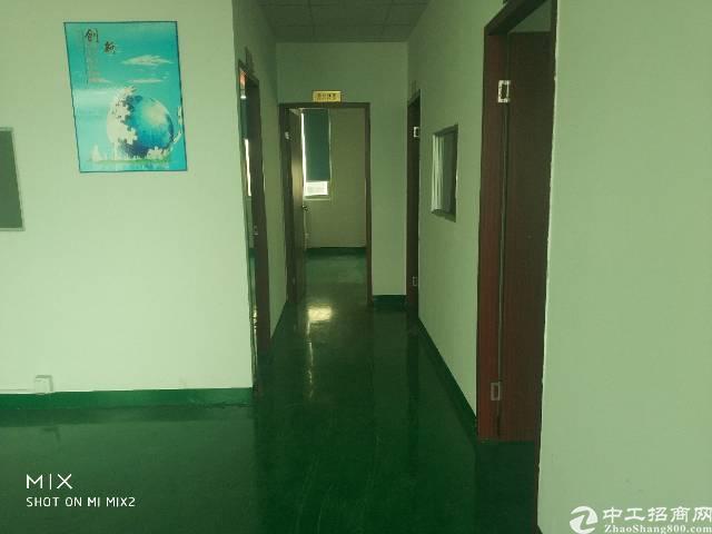 龙华新区大浪行政中心附近新出900平方精装修