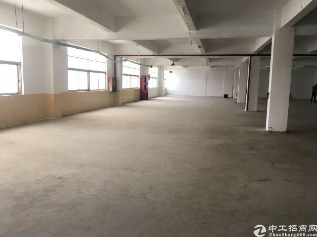 沙井西环路京基百纳附近有楼上带装修厂房出租