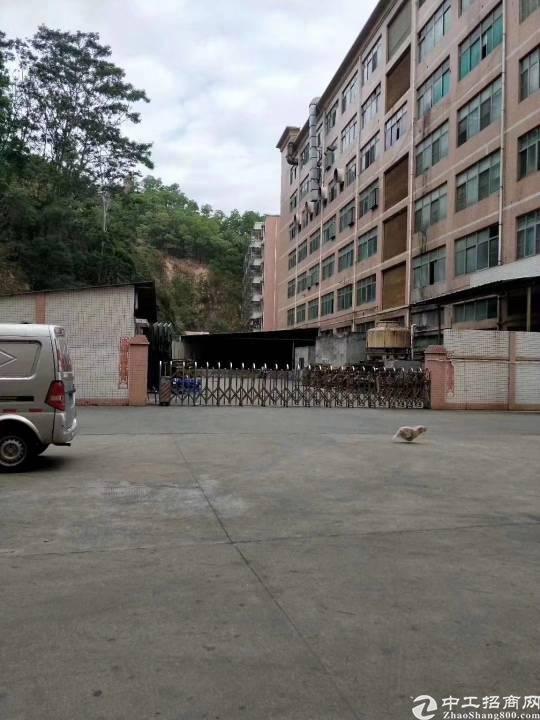 福永桥头带装修1750平米厂房出租