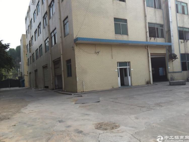 光明原房东红本厂房20000平