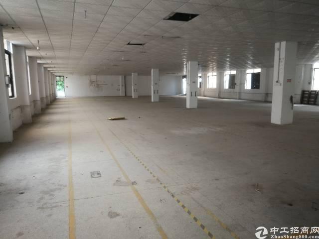 凤凰独栋厂房3层3300平方出租