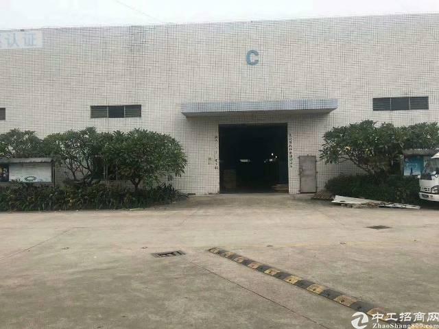 西乡黄田107国道边上新出独门独院钢构厂房4500平米出租可