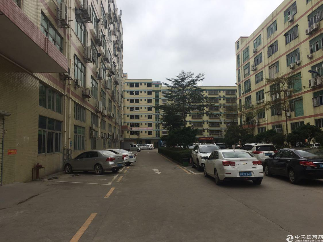 福永镇凤凰107国道旁750平方厂房精装修出租