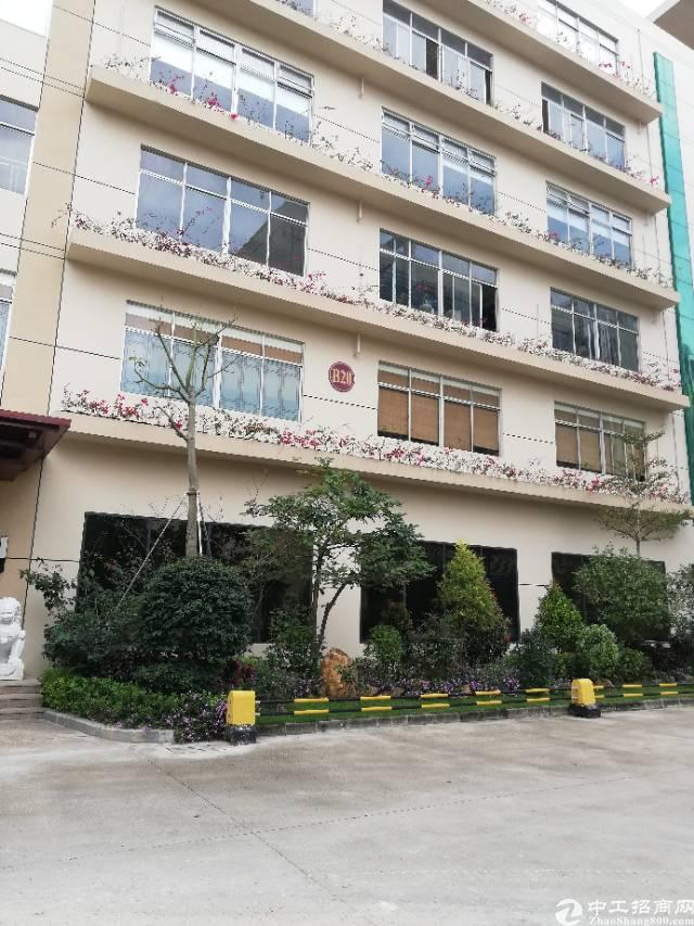 惠阳新圩4500㎡国有双证小厂房出售