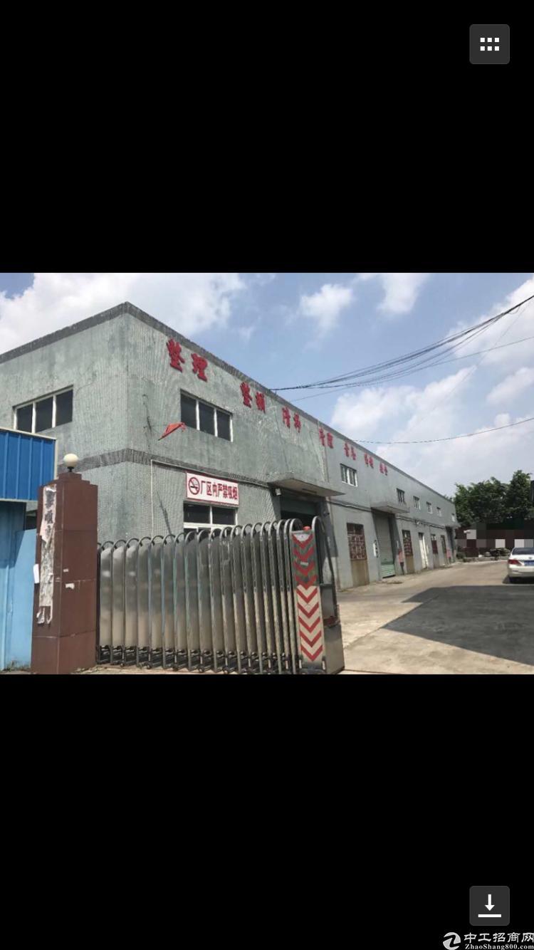 惠州市博罗单一层独院厂房2600平出售