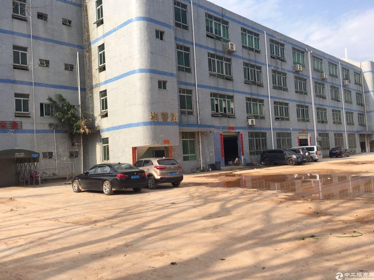 坪山坑梓深汕路旁厂房出租二三四楼每层1600平