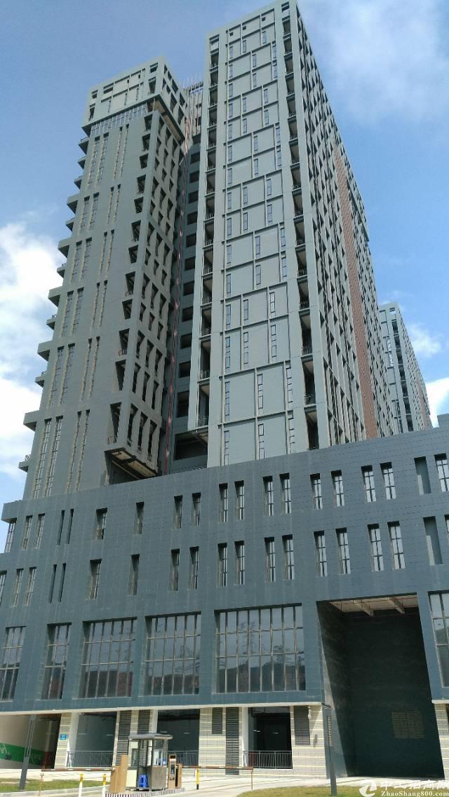 横岗地铁口附近新出一手开发商办公楼82800平招租可整层分租