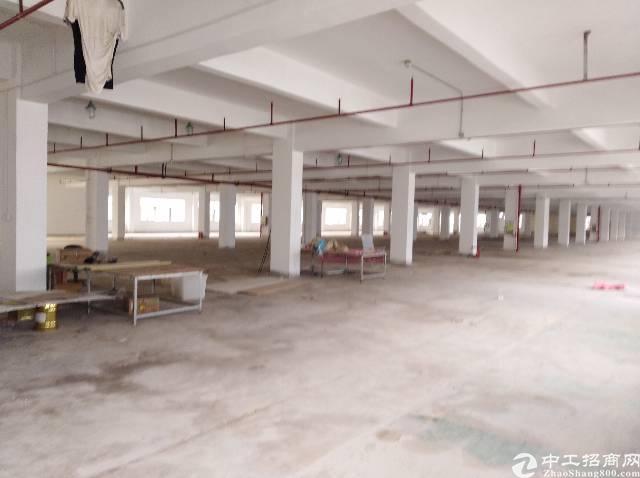 横岗水官高速出口工业园3楼4楼8200平方米招租