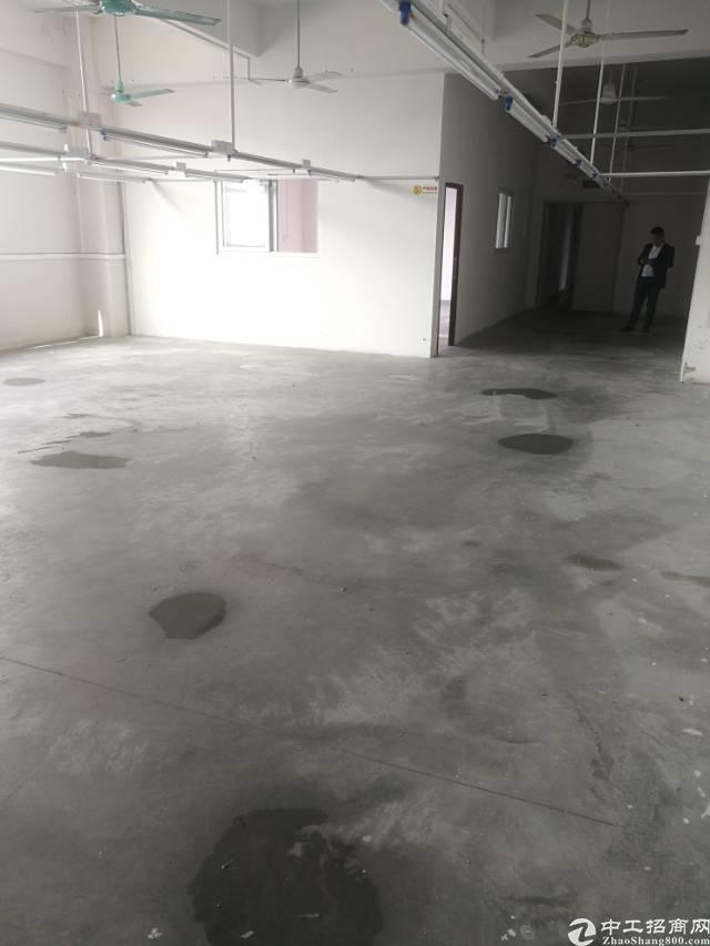 横岗经典小独院4500平米标准厂房招租