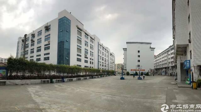 松岗高速路口新出村委独院红本厂房143330㎡,500㎡起租