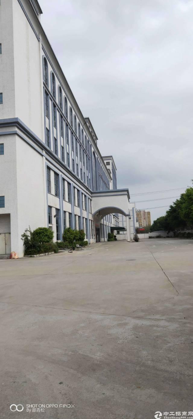 光明新出花园式独门独院带红本厂房约15万平方可分租