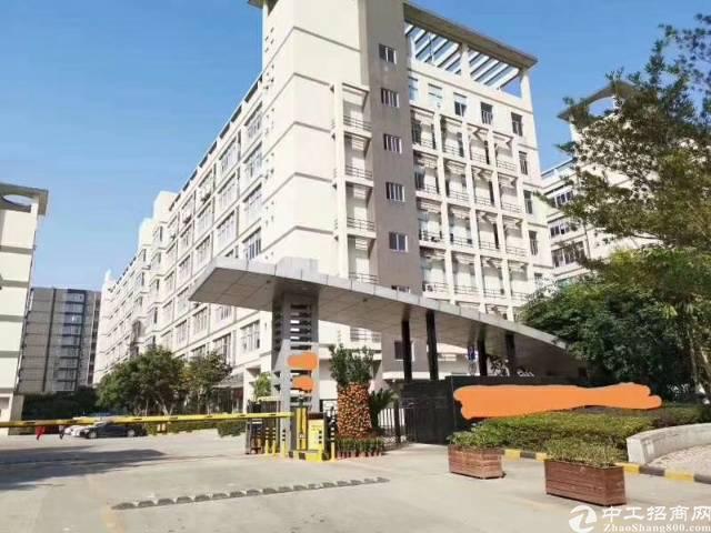 西乡鹤洲大型工业园独栋一楼2580平方厂房出租
