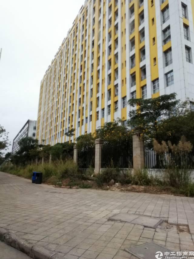 占地3.4万,建面9.9万红本厂房急售