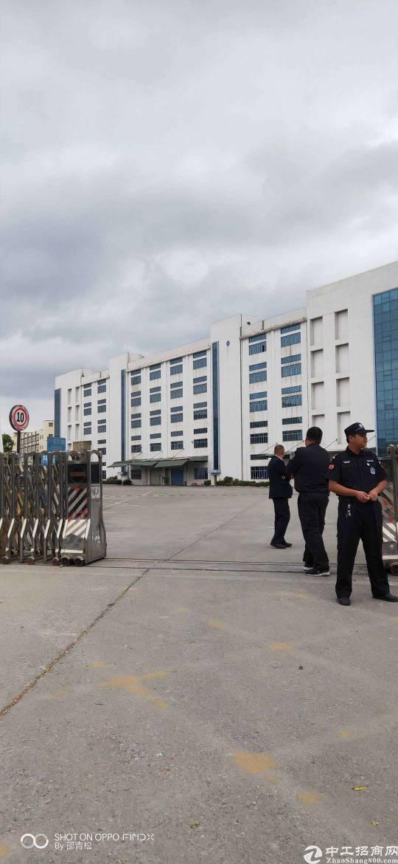 深圳市宝安区150000平米红本厂房出租可分栋租