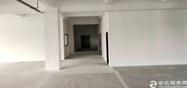 西乡鹤洲新出楼上厂房360平方