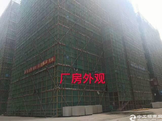东莞常平新推出整栋厂房