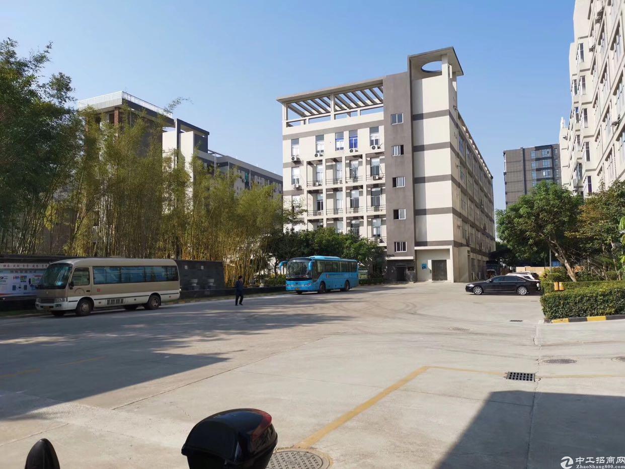 新塘107国道厂房