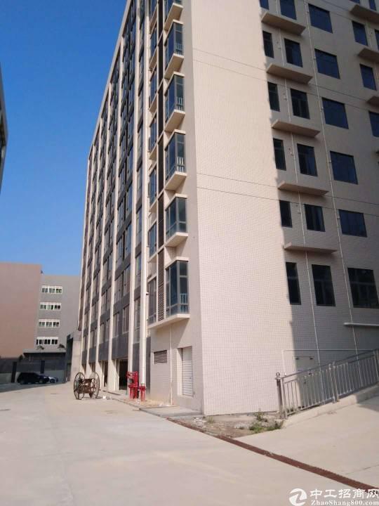 惠州市惠城区水口镇独院红本厂房48000平方出售
