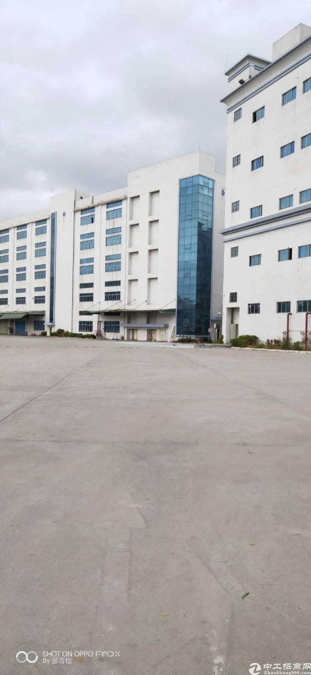 光明15万平方红本厂房出租,100平起分,可办环评,带精装修-图3