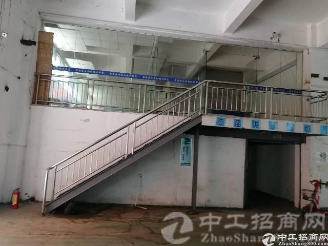 观澜清平高速附近原房东厂房一楼高度6米