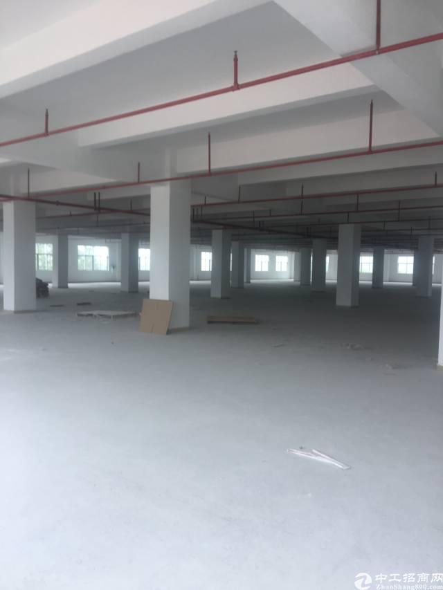 惠州博罗湖镇新出厂房8000平。