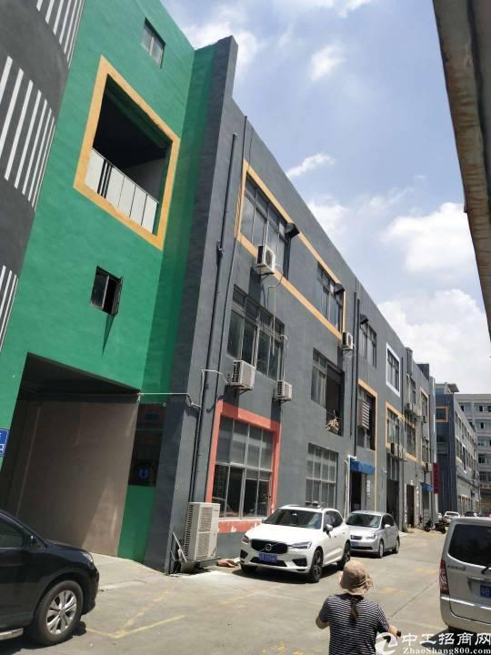 塘尾地铁口一楼1000平方厂房出租