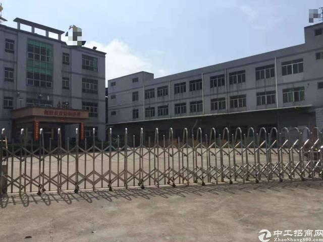 东莞虎门白沙原房东厂房招租,一楼实际面积1500平,租16块