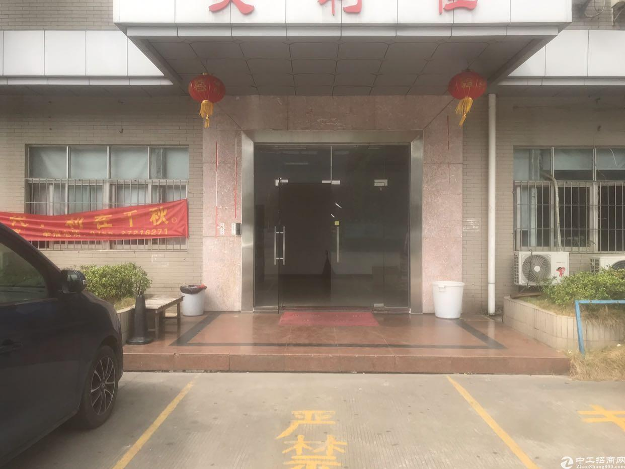 松岗燕川广田路边新出一楼厂房1000平方米出租