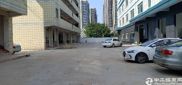 平湖沈海高速路口附近厂房出租。