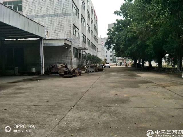 深圳观澜高速口原房东独院厂房出租12000平方
