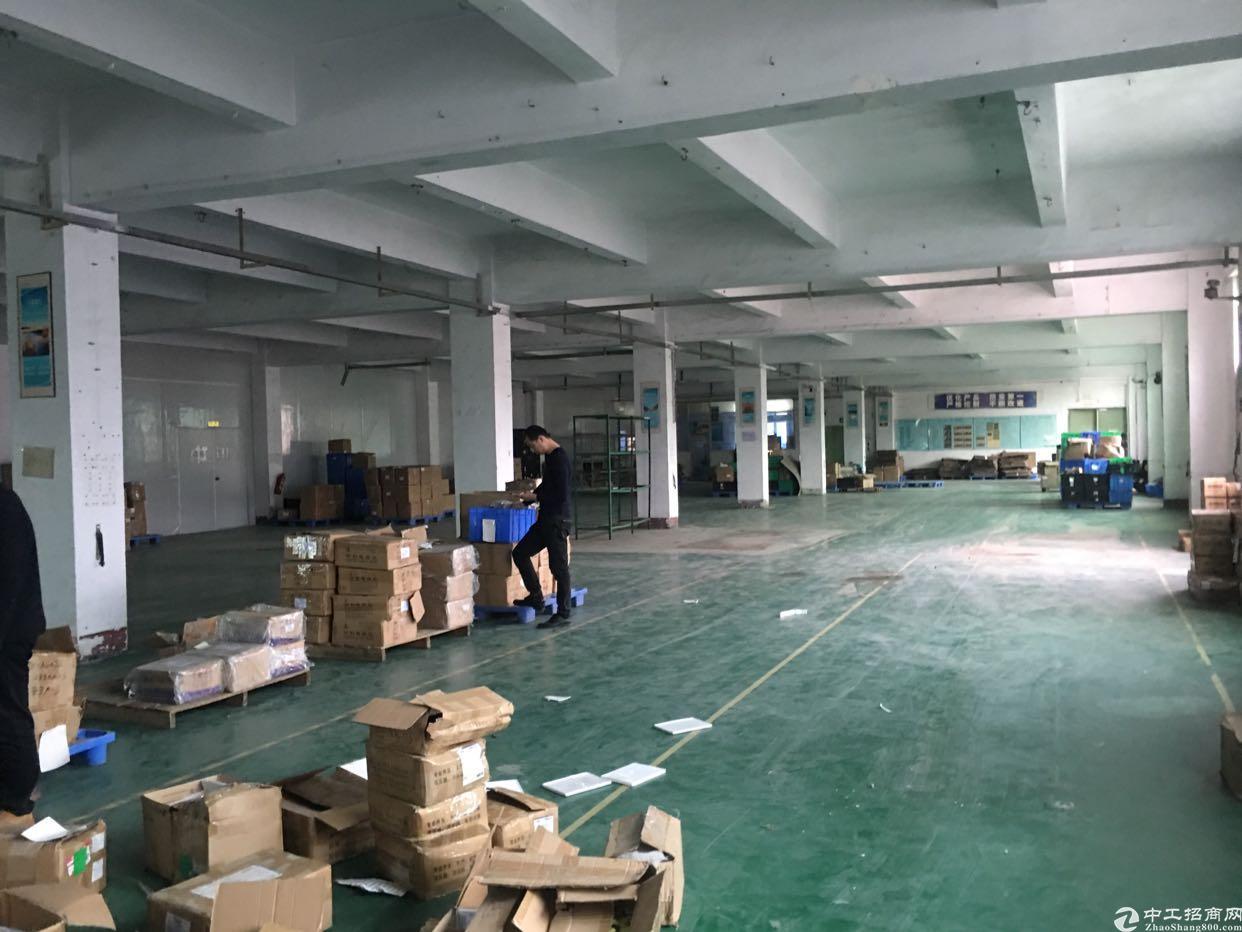 松岗塘下涌新出楼上一整层1800平厂房
