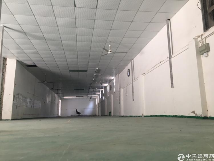 龙岗区平湖街道富民工业区新出一楼410平出租