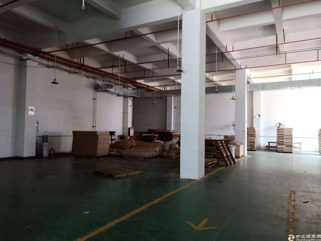 松岗塘下涌新出一楼6600平标准厂房