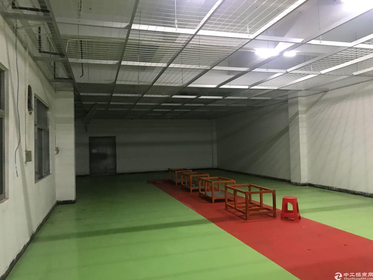 塘厦标准楼上带装修600平方厂房招租
