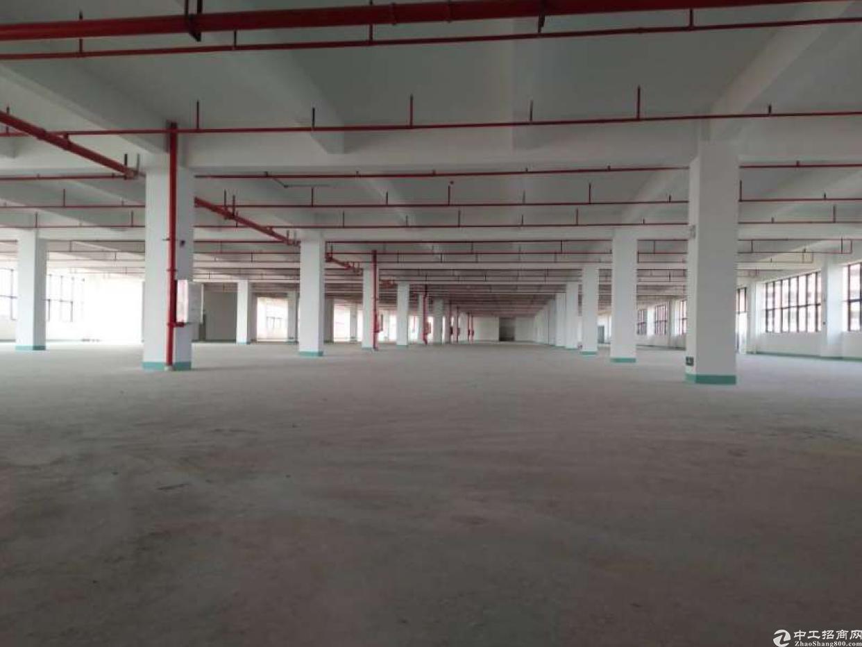 惠阳秋长新出全新标准8层厂房48000平招租一楼10米可分租