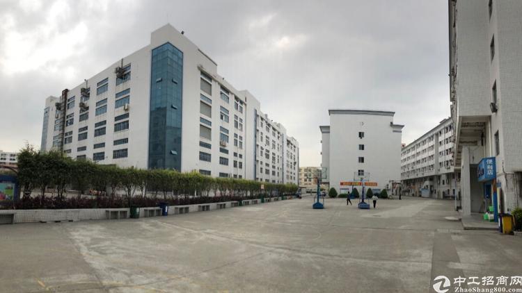 松岗天虹旁高标准原房东红本厂房10万平米分栋无公摊出租