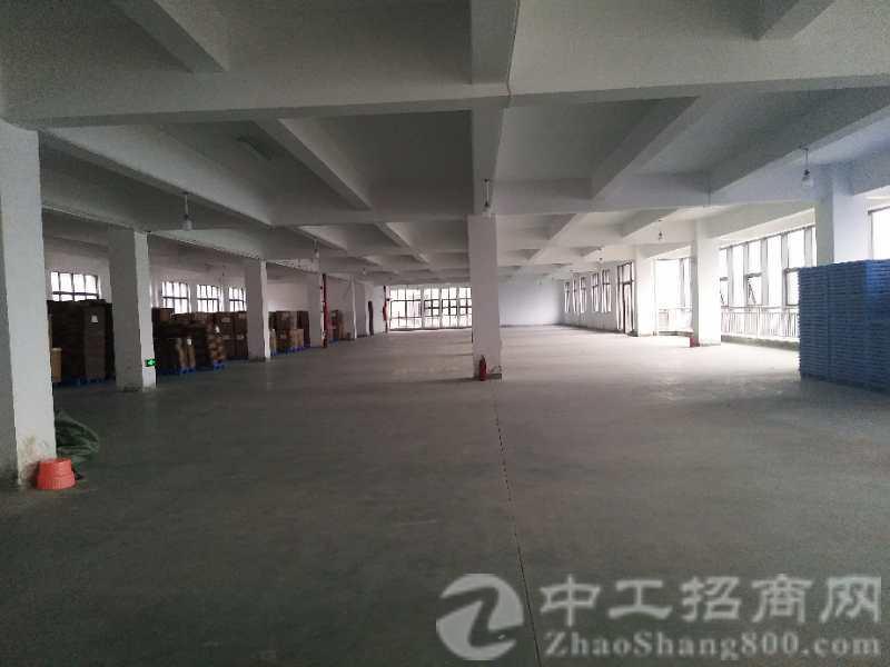 狮岭镇工业园区厂房5000方招租