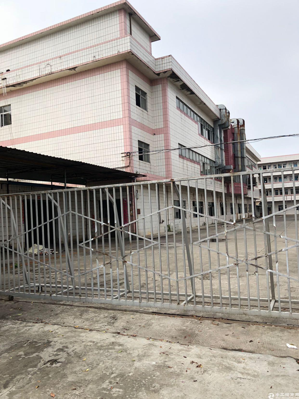 石排镇原房东独门独院工业厂房出租