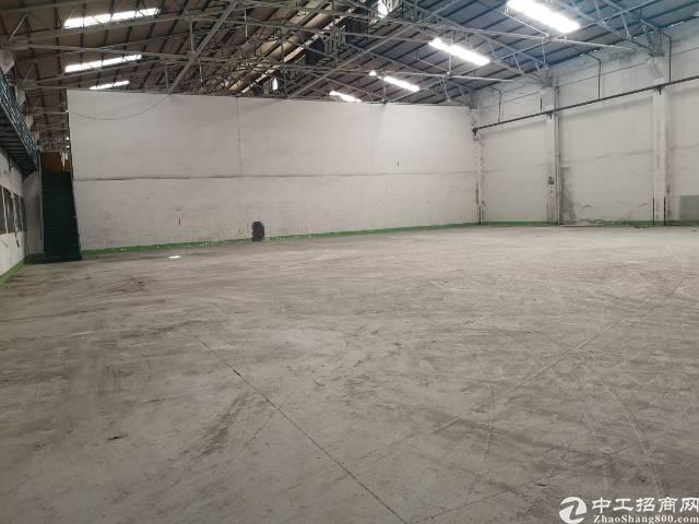西乡九围洲石路边钢结构仓库1100平米出租