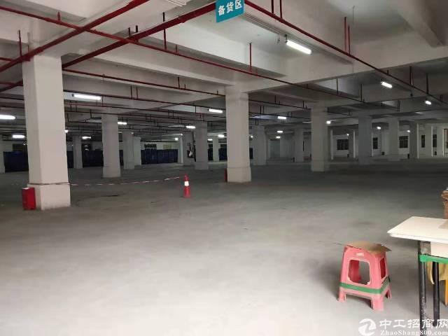 松岗塘下涌一楼带卸货平台6600平方厂房出租