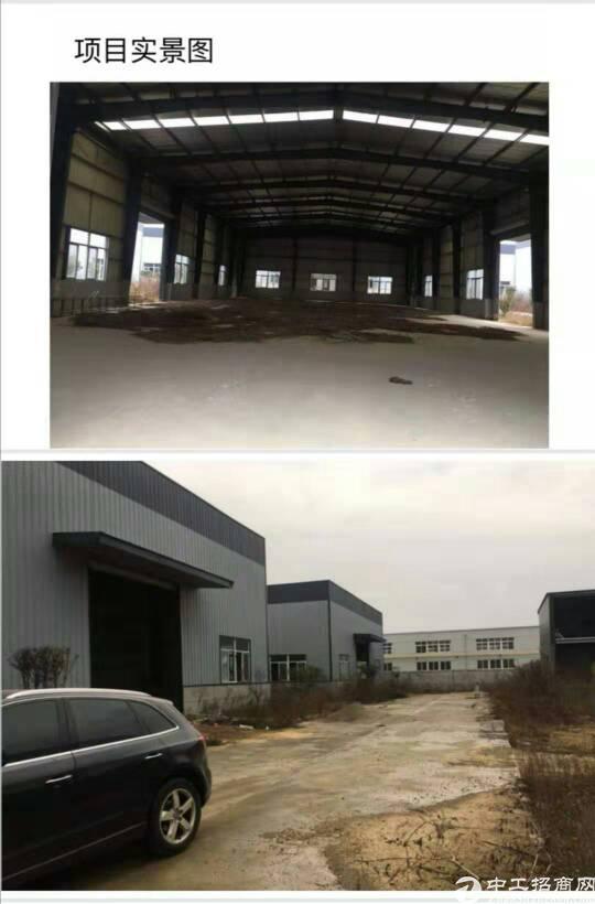 红安钢构产业园1600元每平米,层高9米适合食品产业企业
