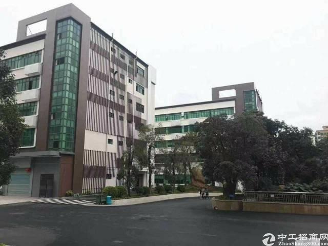 平湖大型工业园带红本20000平米厂房 出租可分租