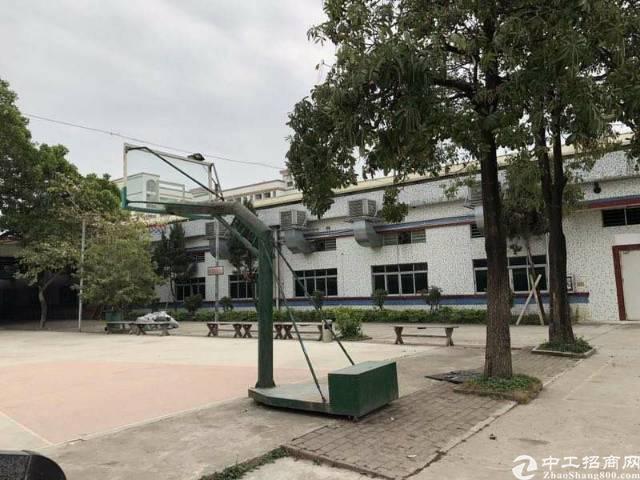 西乡黄麻布独门独院厂房7000平方出租
