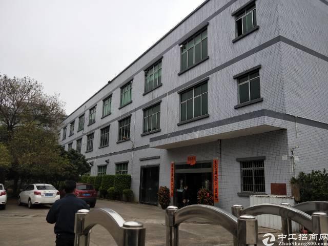 寮步西溪原房东带红本标准独院厂房招租