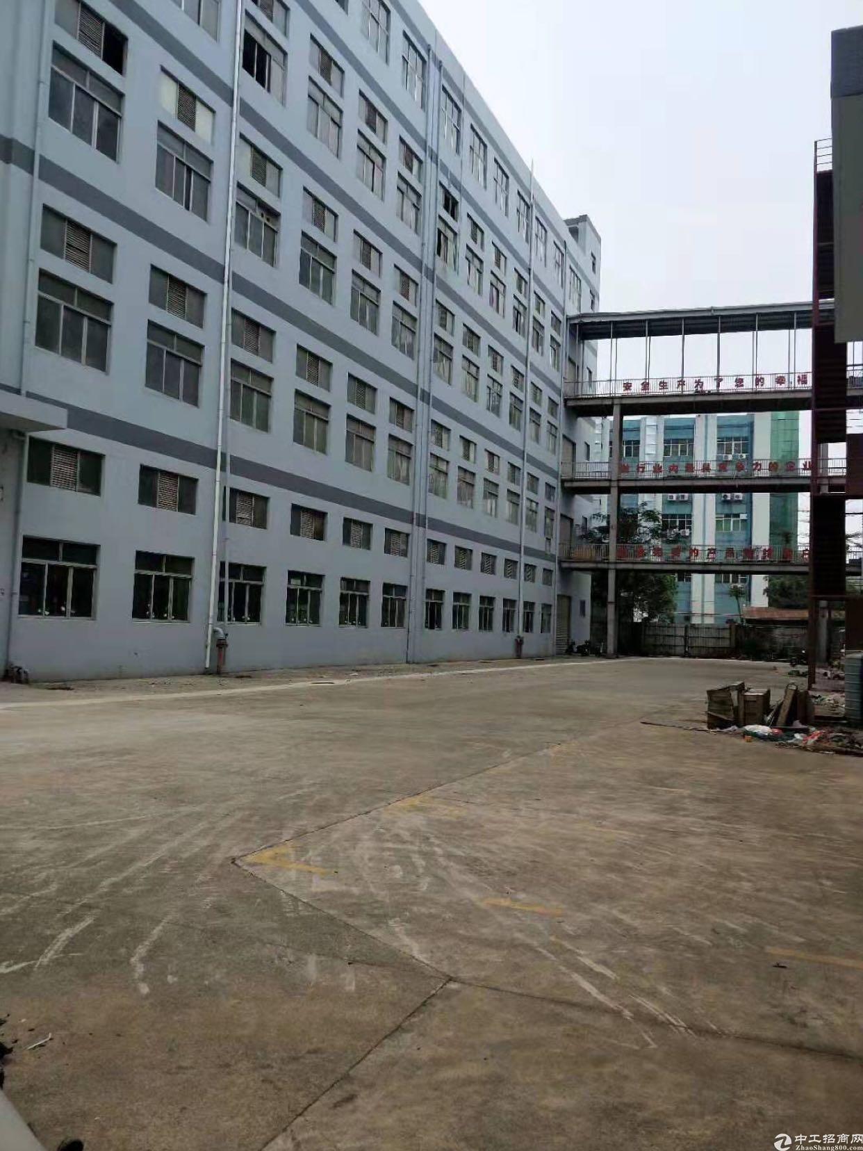松岗新出红本厂房5层26000平,一楼高七米