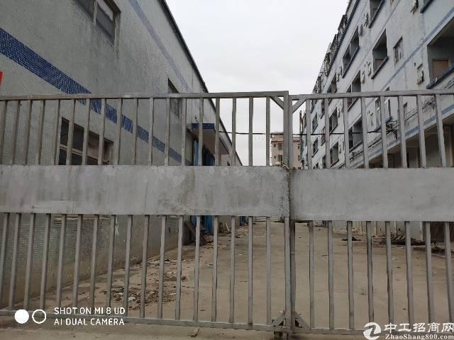 大亚弯澳头石化大道边工业园分租钢结构1500平方