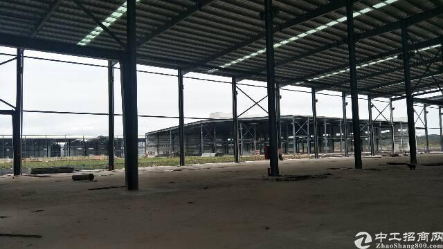 佛山十万平钢构出租滴水14米高,每栋1万以上,可分租,可生产