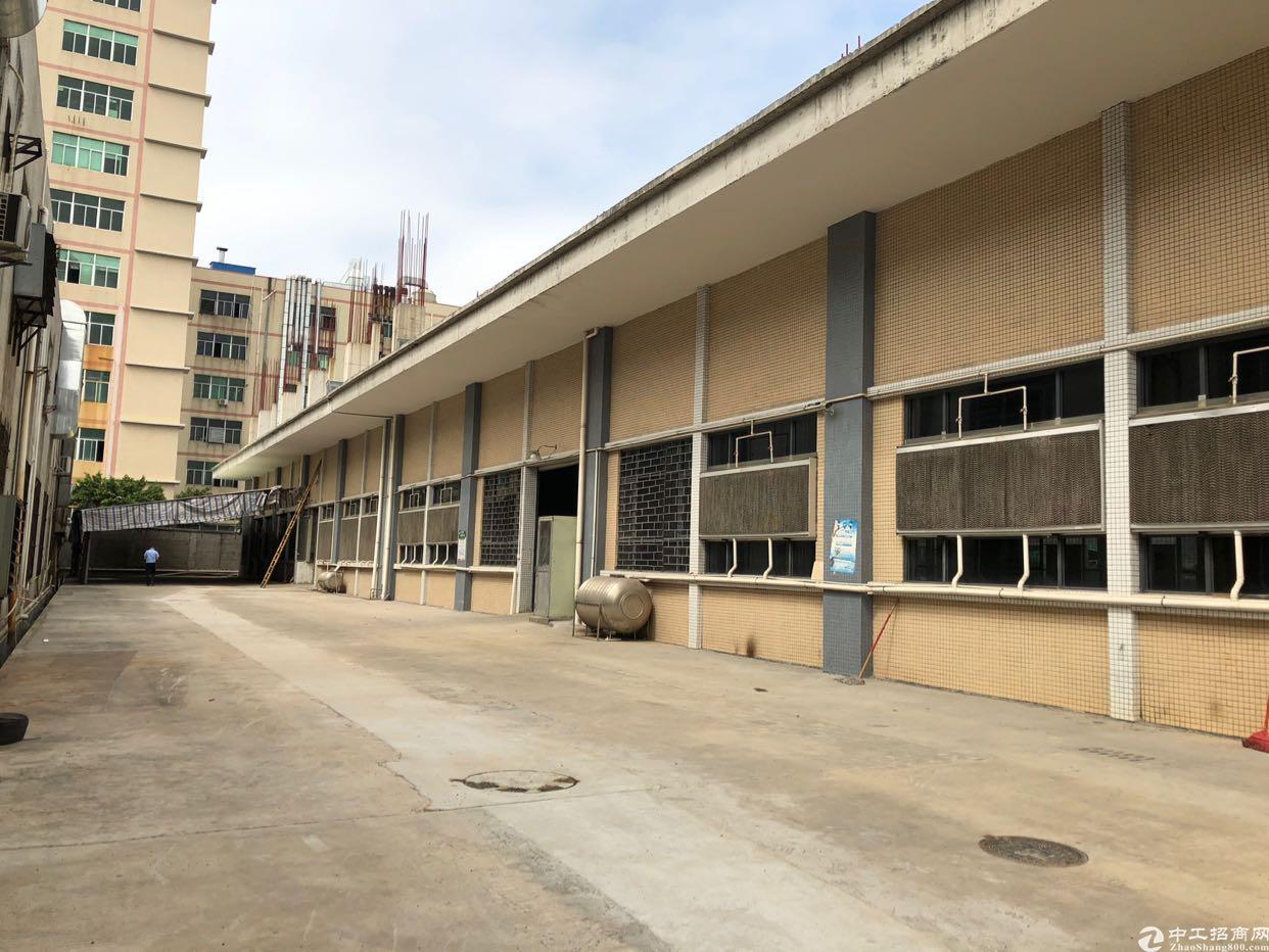 光明西田原房东独门独院标准单一层1780平一楼